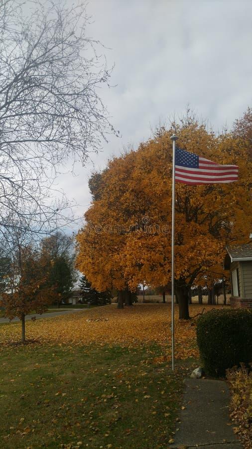 Bandeira americana com as folhas amarelas bonitas dentro Fundo fotos de stock royalty free