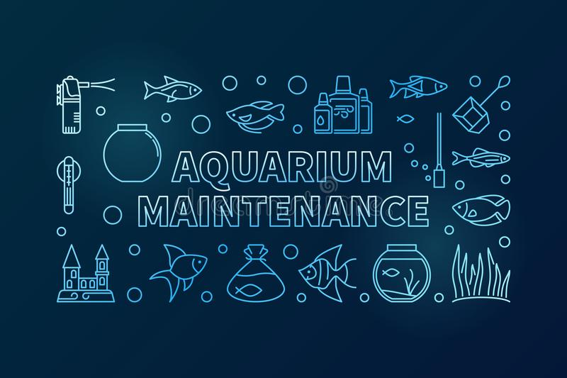 Bandeira azul do vetor da manutenção do aquário no fundo escuro ilustração stock