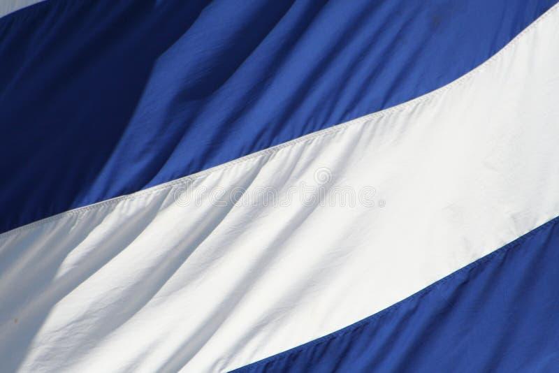 Bandeira branca & azul fotografia de stock royalty free