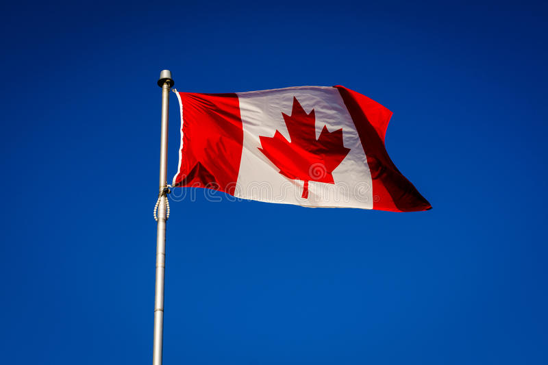 A bandeira canadense na ilha do centro, em Toronto, Ontário fotos de stock