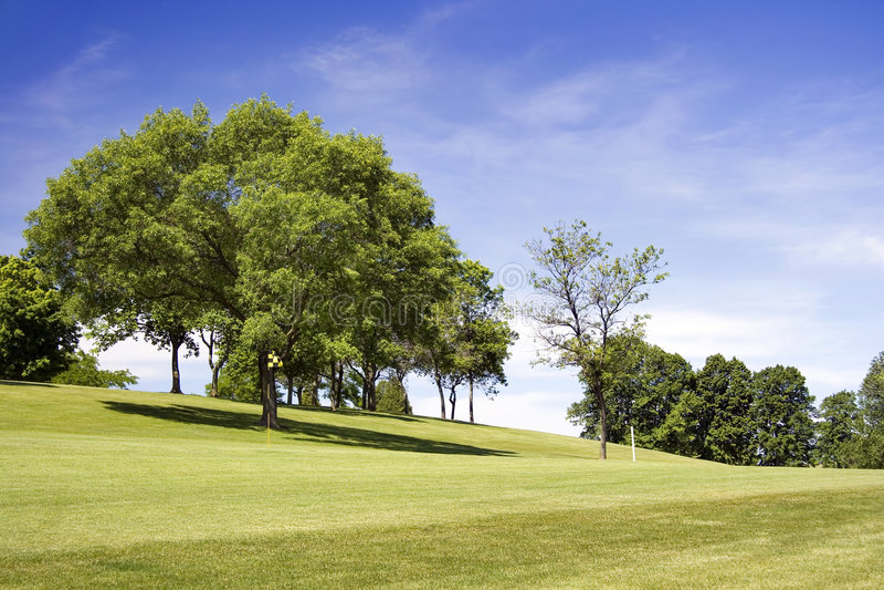 Bandeira Checkered do campo de golfe fotografia de stock