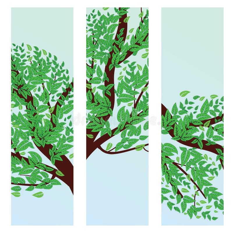 Bandeira com as folhas do verde no ramo ilustração royalty free