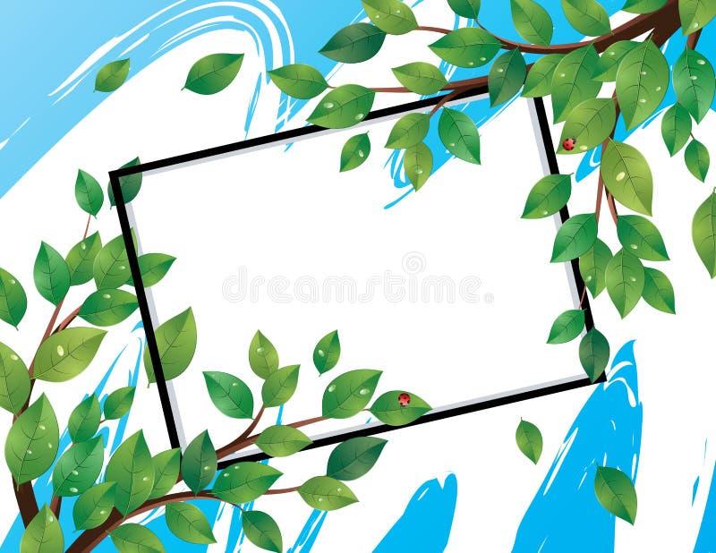 Bandeira com as folhas do verde no ramo ilustração stock