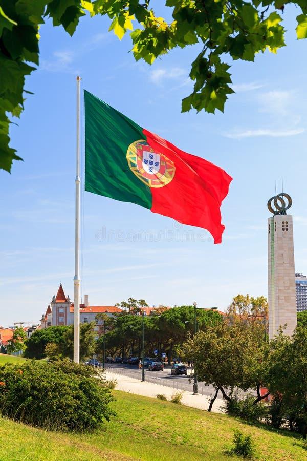 Bandeira com folhas fotos de stock