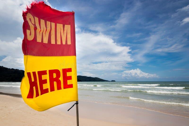 Bandeira com nadada do sinal aqui na praia para para informar ao turista para a área de segurança onde seguro nadar praia do verã foto de stock
