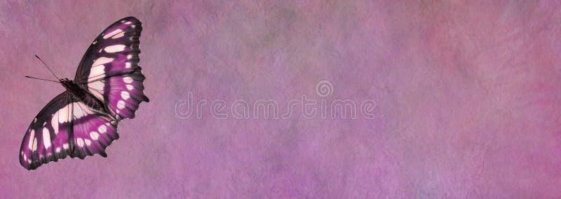 Bandeira cor-de-rosa do quadro de mensagens da borboleta fotografia de stock