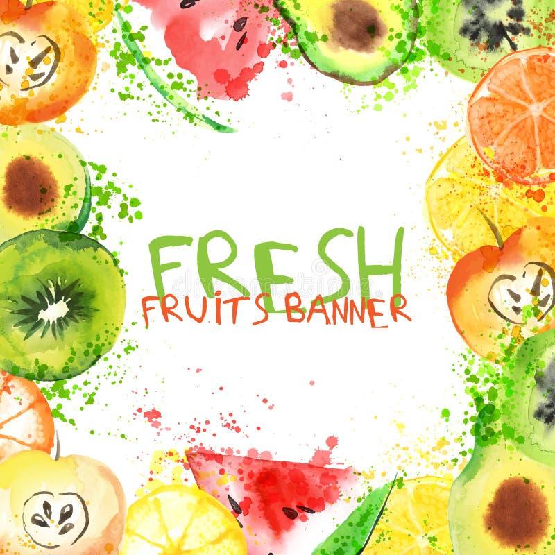 Bandeira da aquarela do fruto fresco Maçã, citrinos, abacate e qiwi de Watercolored em uma bandeira ilustração stock