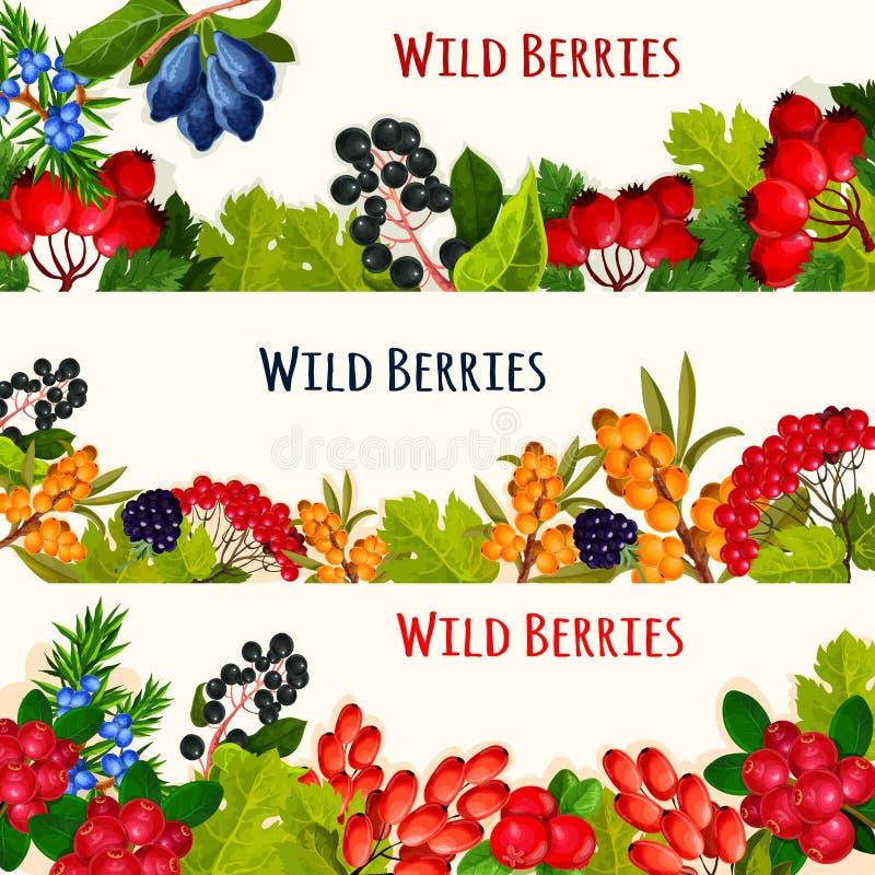 A bandeira da baga e a beira selvagens do fruto para o alimento projetam ilustração do vetor