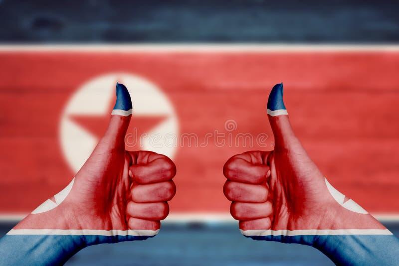 Bandeira da Coreia do Norte pintada nos polegares fêmeas das mãos acima fotografia de stock