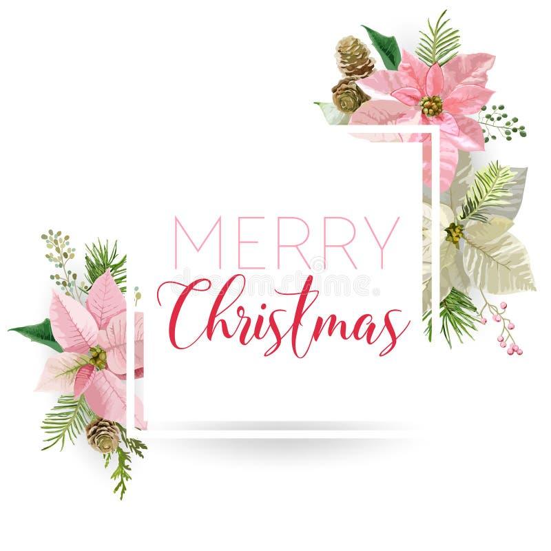 Bandeira da flor da poinsétia do inverno do Natal, fundo gráfico, convite floral de dezembro, inseto ou cartão ilustração do vetor
