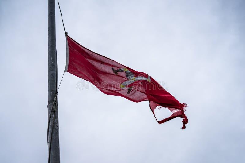 A bandeira da ilha do homem ou a bandeira de Mann são um triskelion, composto de três pés blindados com dentes retos dourados, em fotos de stock royalty free