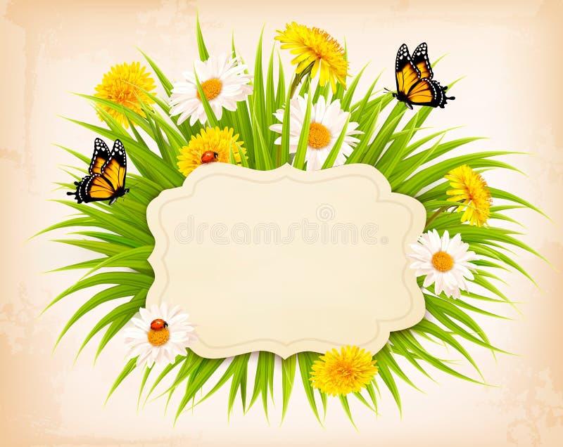Bandeira da mola com grama, flores e borboletas ilustração stock