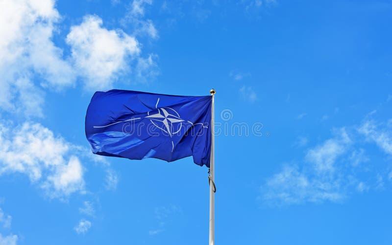 Bandeira da OTAN que acena no vento fotos de stock royalty free