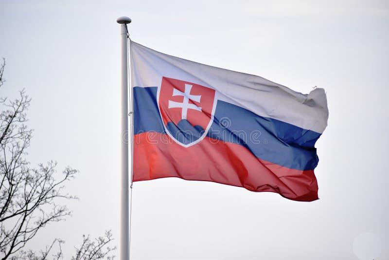 Bandeira da rep?blica eslovaca - bandeira de Eslov?quia imagens de stock