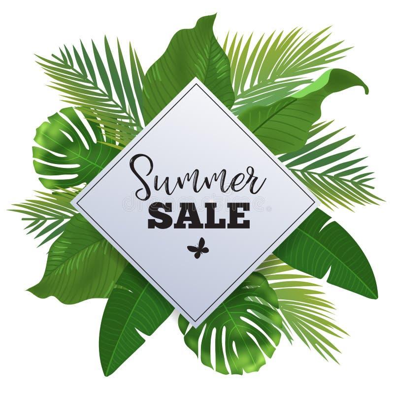 Bandeira da venda, cartaz com folhas de palmeira, folha da selva e rotulação da escrita Fundo tropical floral do verão ilustração royalty free