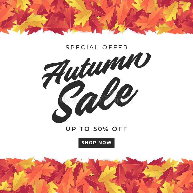Bandeira da venda do outono para a venda de compra Fundo colorido das folhas de outono ilustração royalty free