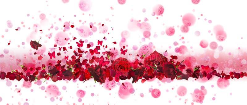 Bandeira das rosas vermelhas e das borboletas foto de stock royalty free