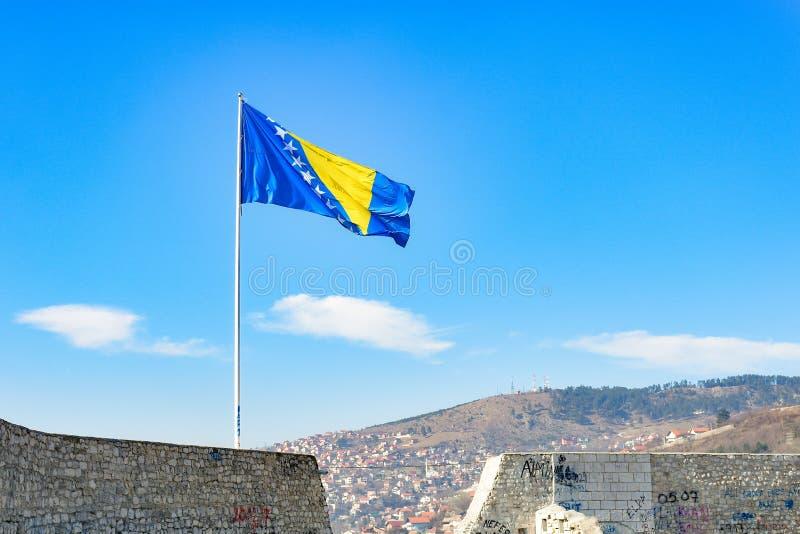 Bandeira de Bósnia e de Herzegovina imagem de stock royalty free