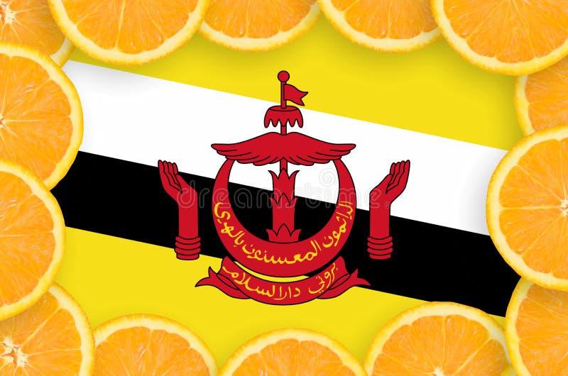 Bandeira de Brunei Darussalam Darussalam no quadro fresco das fatias dos citrinos fotos de stock