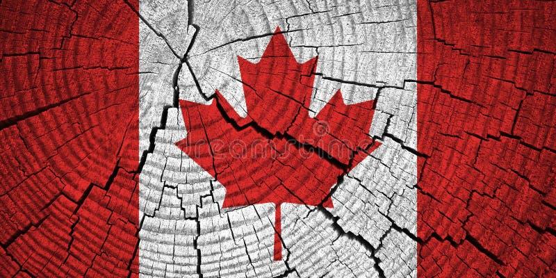 Bandeira de Canadá fotografia de stock royalty free
