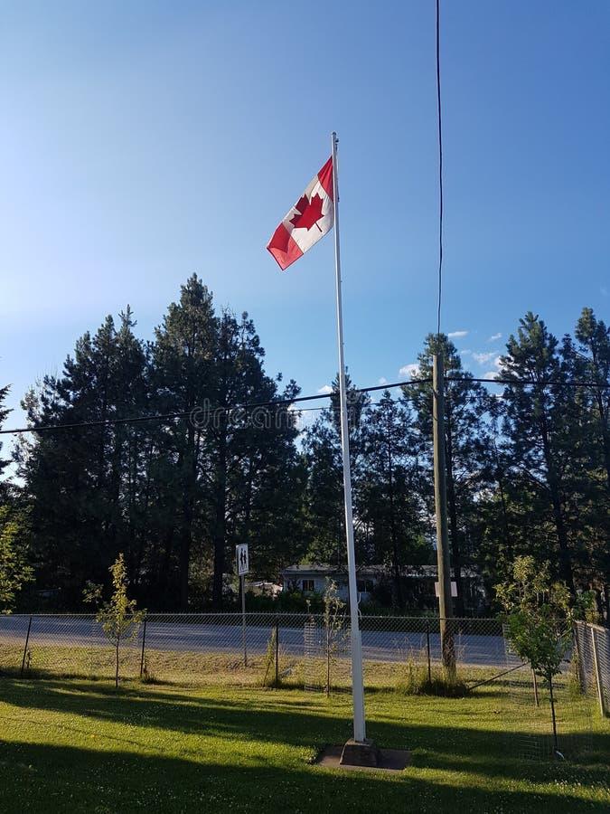 Bandeira de Canadá na jarda de escola fotografia de stock
