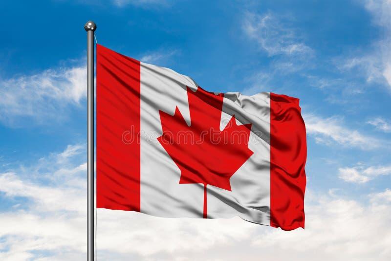 Bandeira de Canadá que acena no vento contra o céu azul nebuloso branco Bandeira canadense fotografia de stock royalty free