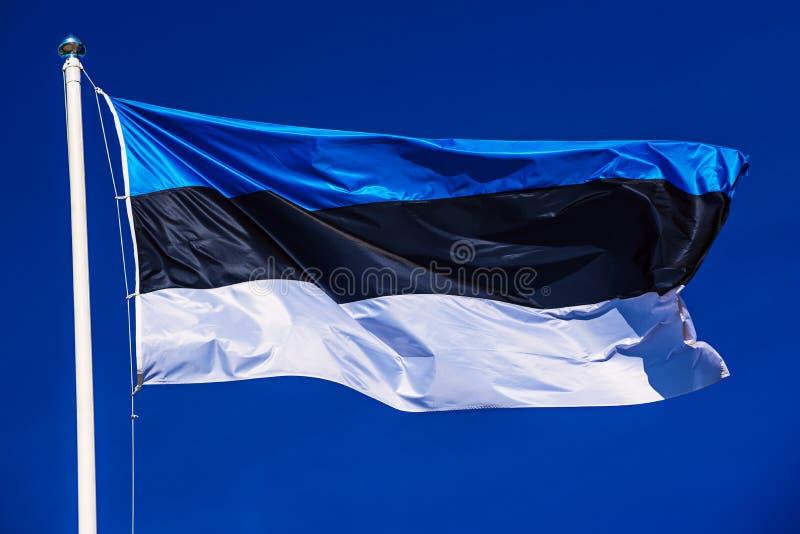 Bandeira de Est?nia imagens de stock