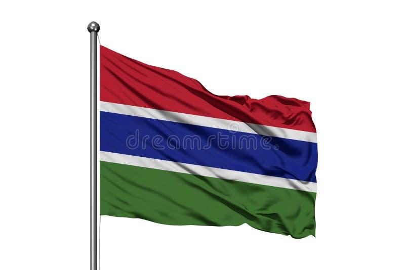 Bandeira de Gâmbia que acena no vento, fundo branco isolado Bandeira gambiana ilustração do vetor