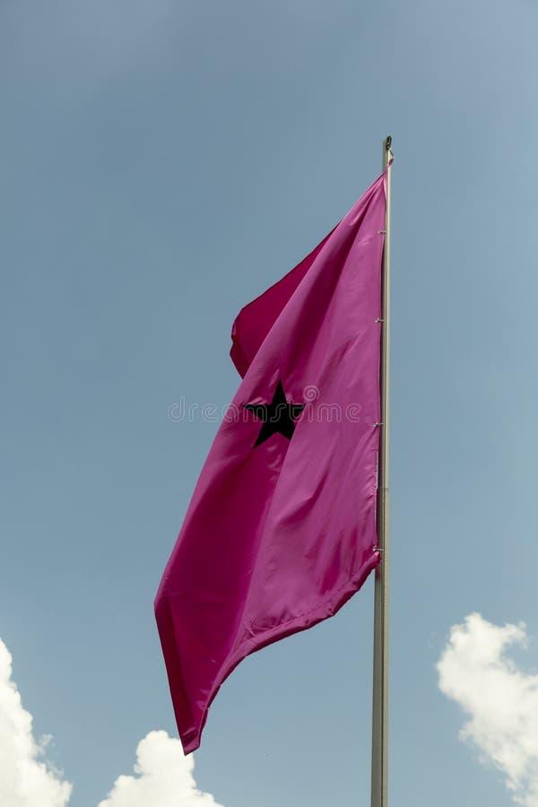 Bandeira de LGBT no polo foto de stock royalty free