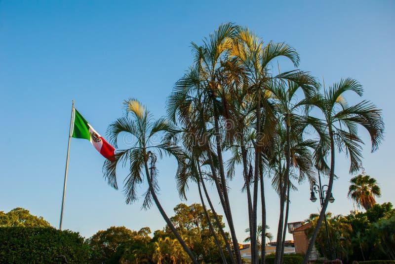 A bandeira de México torna-se contra o céu e as palmeiras na noite Merida yucatan méxico fotos de stock royalty free