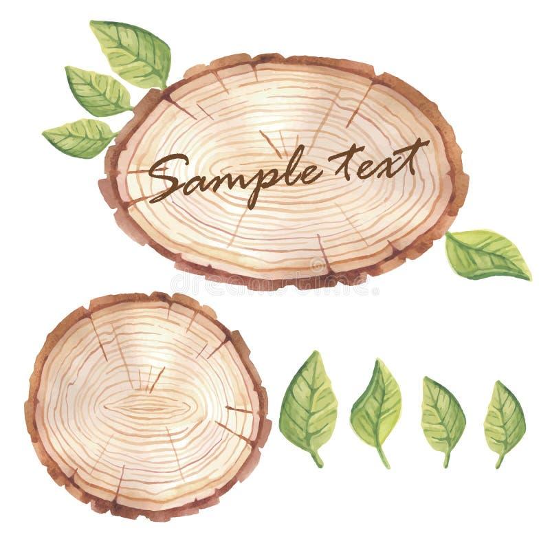 Bandeira de madeira da fatia da aquarela com plantas carnudas ilustração stock