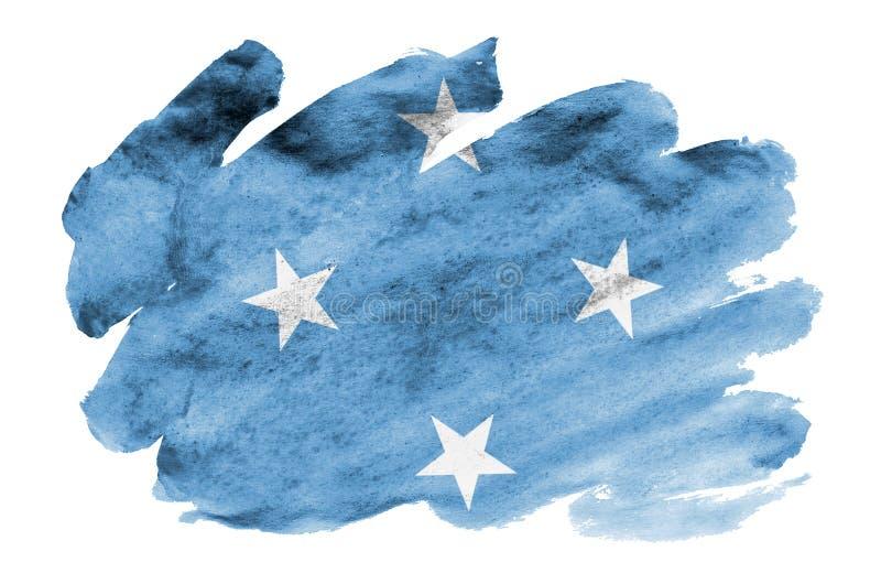 A bandeira de Micronésia é descrita no estilo líquido da aquarela isolada no fundo branco ilustração do vetor