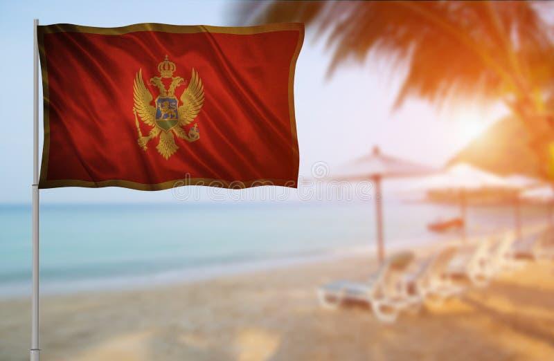 Bandeira de Montenegro fotos de stock