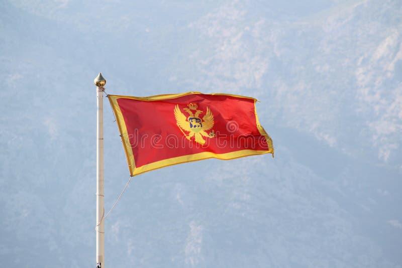 Bandeira de Montenegro na citadela de Kotor, Montenegro foto de stock royalty free