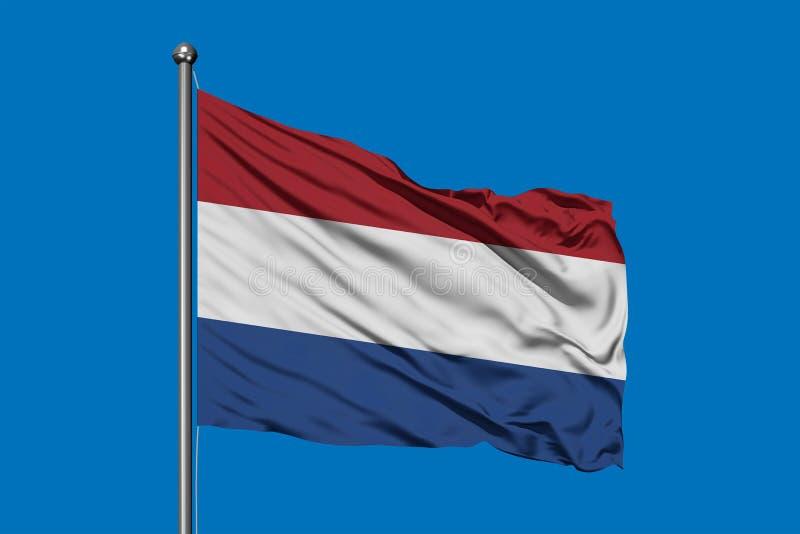 Bandeira de Países Baixos que acena no vento contra o céu azul profundo Bandeira holandesa imagem de stock royalty free