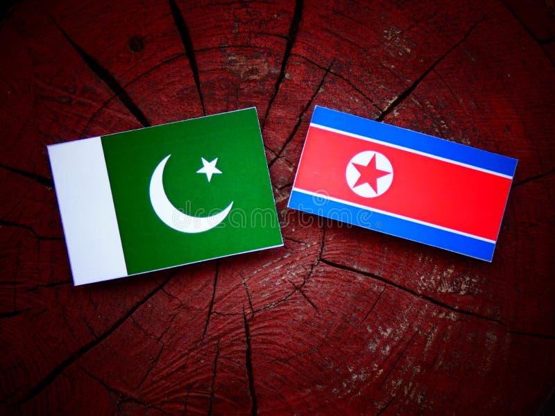 Bandeira de Paquistão com bandeira norte-coreana em um coto de árvore fotos de stock royalty free