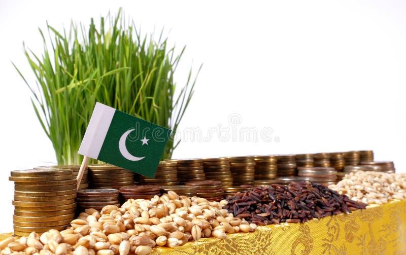 Bandeira de Paquistão que acena com a pilha de moedas do dinheiro e as pilhas do trigo imagens de stock royalty free