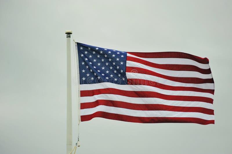Bandeira de voo dos E.U. imagens de stock royalty free