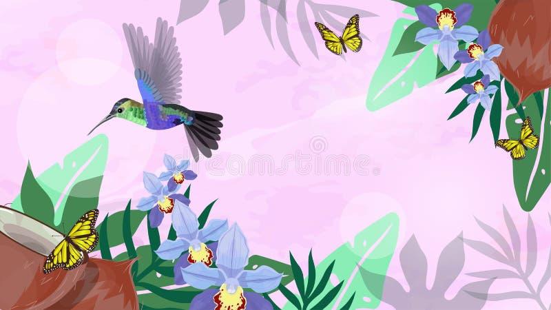 Bandeira delicada cor-de-rosa com colibris, orquídea, coco, folhas tropicais Copie o espa?o Ilustra??o do vetor ilustração do vetor