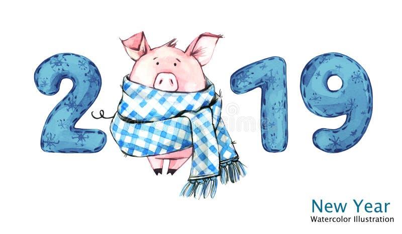 Bandeira do ano 2019 novo feliz Porco bonito no lenço do inverno com números Ilustração da aguarela Símbolo de feriados de invern ilustração do vetor