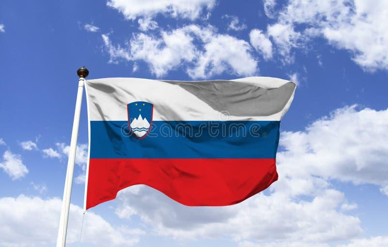 Bandeira do Eslovênia, brasão foto de stock