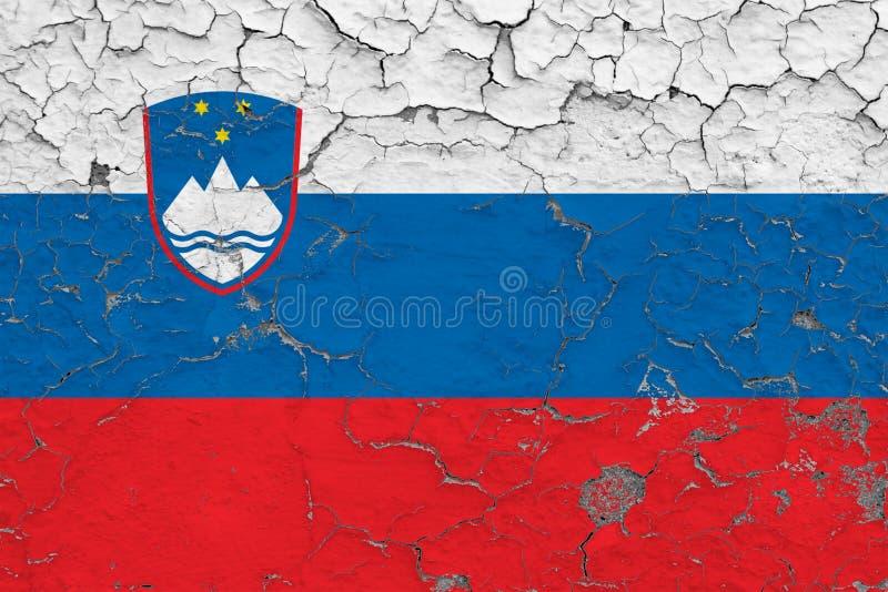 Bandeira do Eslovênia pintada em parede suja rachada Teste padr?o nacional na superf?cie do estilo do vintage ilustração do vetor