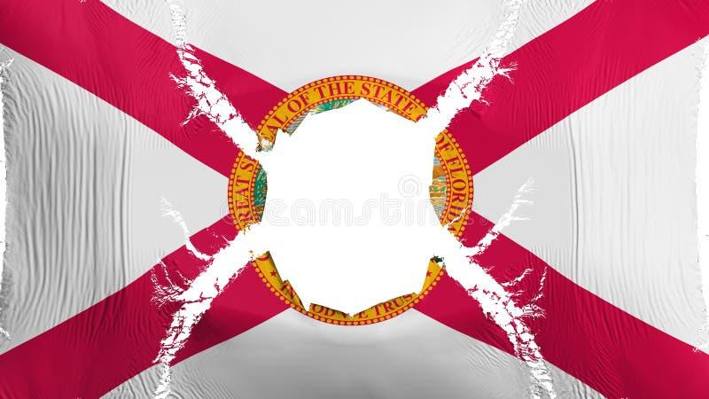 Bandeira do estado de Florida com um furo ilustração do vetor