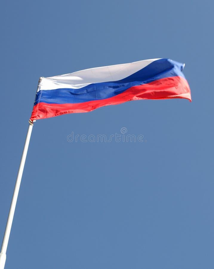 Bandeira do flapping de Rússia imagem de stock