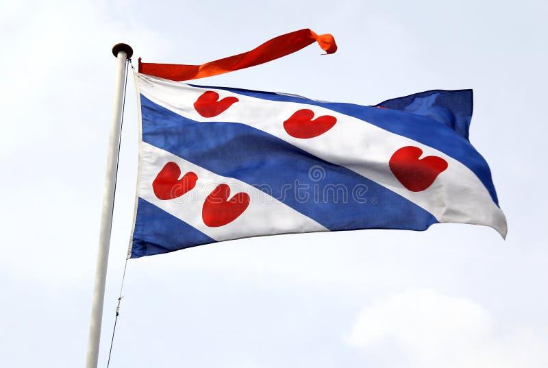 Bandeira do Frisian fotografia de stock royalty free