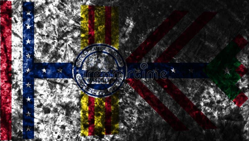 Bandeira do grunge da cidade de Tampa, estado de Florida, Estados Unidos da América ilustração royalty free