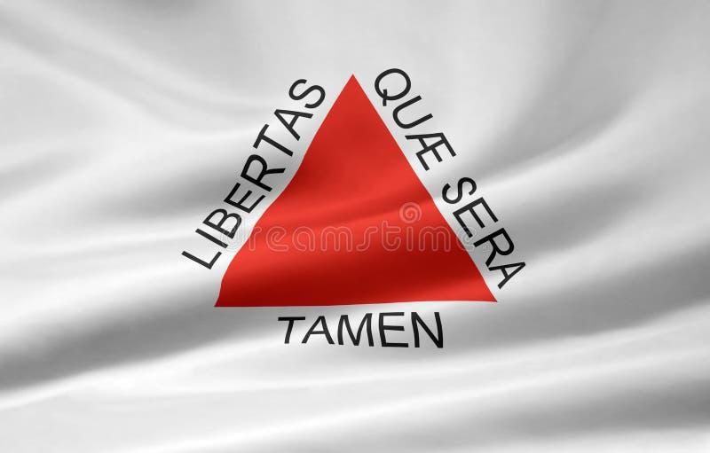 Bandeira do Minas Gerais ilustração do vetor
