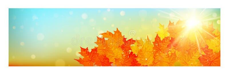 Bandeira do outono com as folhas coloridas no efeito do bokeh do ouro Eps 10 ilustração royalty free