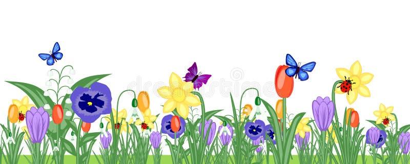 Bandeira do prado da flor da mola ilustração royalty free