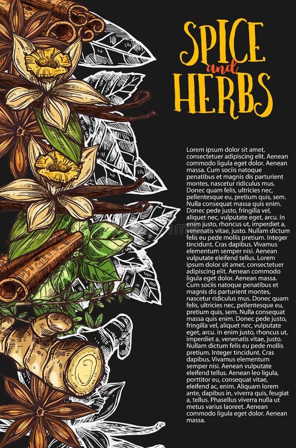 Bandeira do quadro da erva e da especiaria com planta picante ilustração royalty free